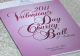 Valentine's Day Charity Ball
